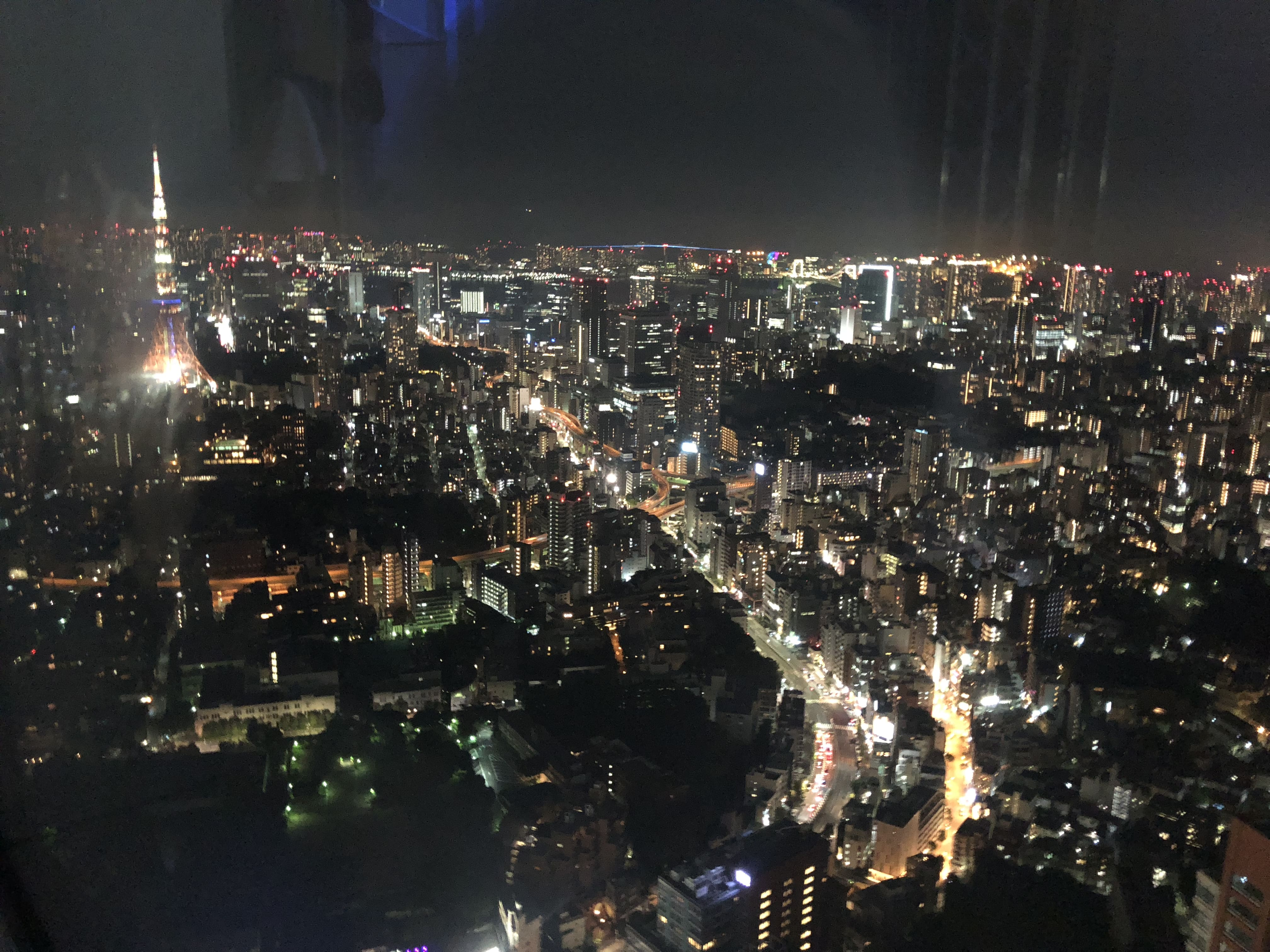 the Observation Deck in Roppongi Hills
